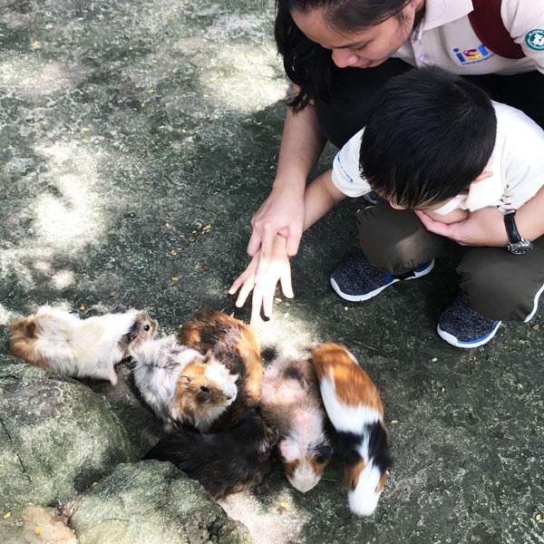 International Special Needs Children, Subang Jaya