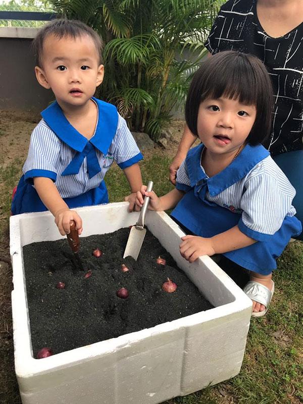 Strawberry Wonderland, Taman Prima Saujana, Kajang
