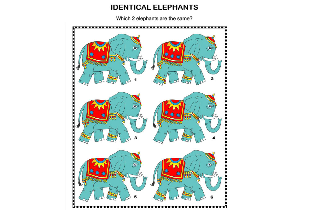 Logic & Puzzles - Identical elephants
