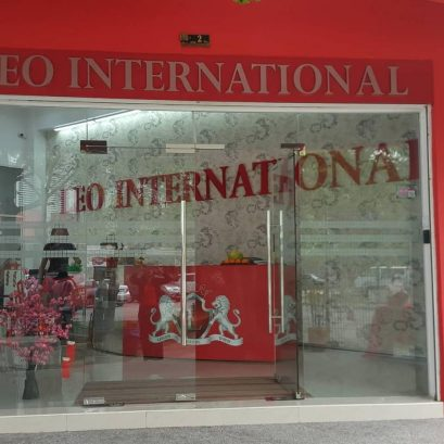 Leo International