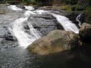 Bukit Hijau Recreational Forest