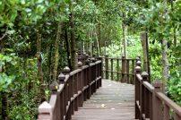 Tanjung Prai National Park