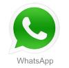 whatsapp kiddy123.com