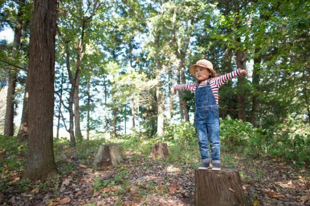 Travel Ideas That are Child Friendly in Malaysia