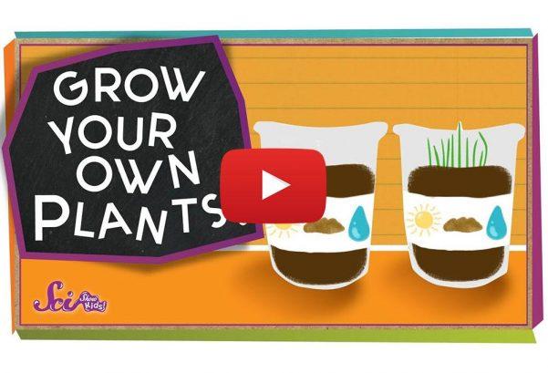 SciShow Kids: Grow Your Own Plants! - #sciencegoals