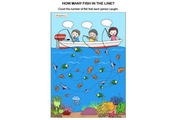 MATHS - How many fish