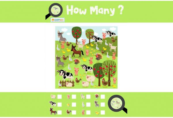 NUMBERS - How Many Animals