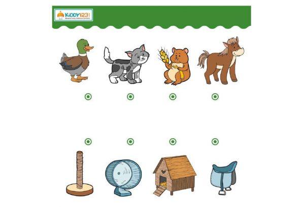LOGIC - Match Animals Objects