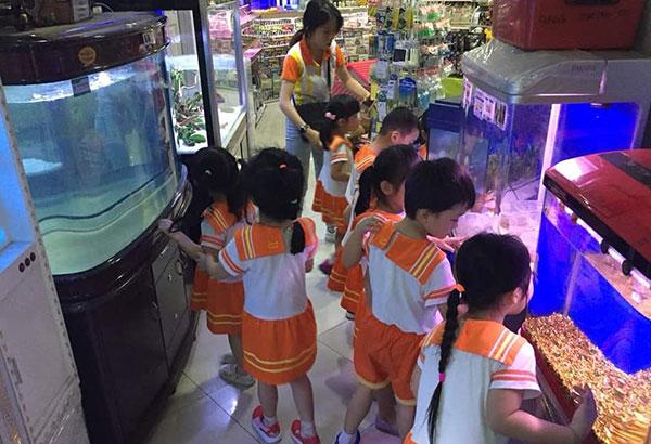 Smart Talent Kindergarten, Ipoh
