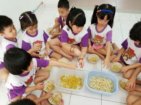 Happy Bear Preschool (Tadika Rimba Ilmu), Selayang