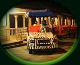 Taiping Zoo & Night Safari